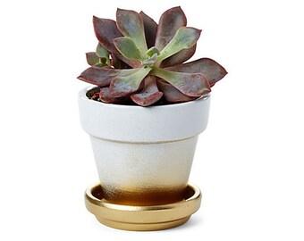 Gold ombre mini planters, set of 3 hand painted pots, succulents pots, favors