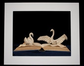 """Book Sculpture 'Swan Song' Mounted 10"""" x 8"""" Photographic Print"""