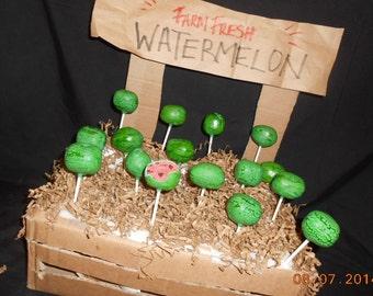 24 WATERMELON cake pops Summer BBQ party 2 dozen