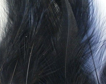 Cruelty Free Rooster Feathers - Black