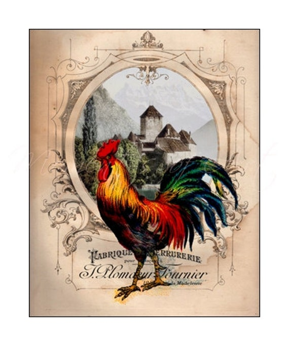 French chateau rooster iv rooster art print 8x10 by for French kitchen artwork