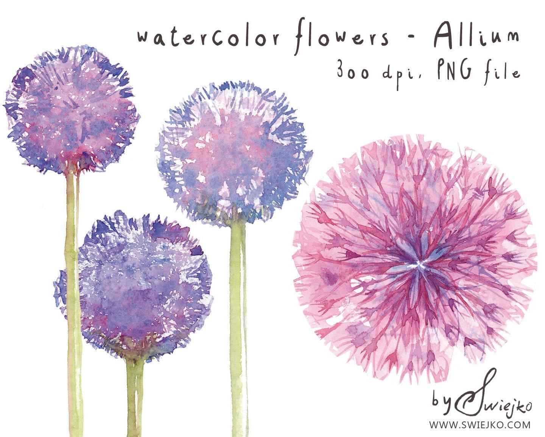 Watercolor clipart watercolor flowers flower clipart for Watercolor flower images