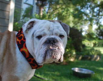 """Dog Cooling Collar, Pet Neck Cooler Bandana, Fabric Polymer Collar with Buckle Size Large 18"""" - 22"""" Blue or Orange Fire Flames iycbrand"""