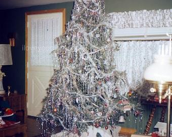 Vintage Kodachrome Slide..Tinsley Christmas Tree..1962..Instant Download..Kodachrome Christmas..Mixed Media Photo..Greeting Card Photo