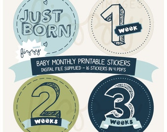 16x Baby Monthly Milestone Onesie Stickers Boy Printable Instant Download - Digital file only. BM0005