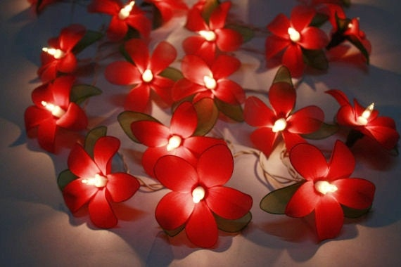 Red Flower String Lights : Fairy Lights20 Red Flower Fairy String Lights by fairylighting