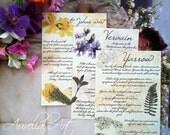 DIGITAL Healing Plant Journal Pages - alchemy ingredients, grimoire, book of shadows, garden book, witchcraft