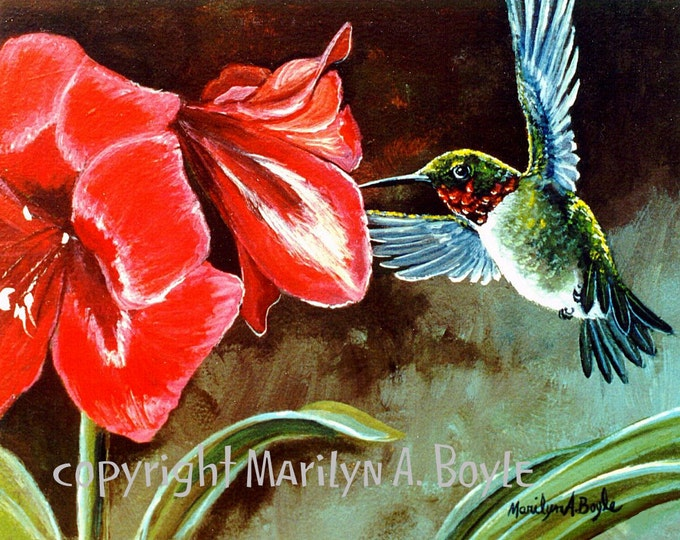 PRINT - RUBYTHROAT HUMMINGBIRD- Amaryllis, flower, red, wings, flying, nature, garden, flower,  from an original painting, feathers,