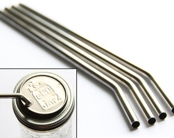 4 Pack Classic Stainless Straws