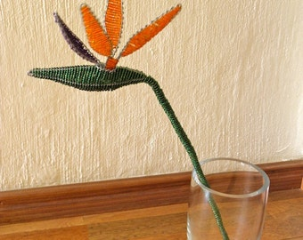 African Beaded Wire Flower - STRELITZIA - Natural