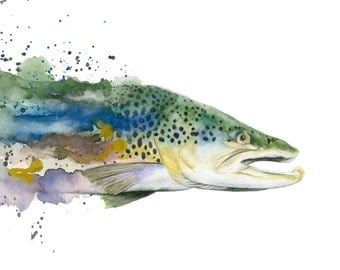Brown Trout Watercolor Print