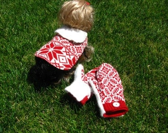Small dog sweater with matching mittens. Festive red/white winter snowflake motif with angora collar