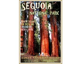 SEQUOIA NATIONAL PARK -New Retro Travel Tourism Poster - Original Exclusive - California Redwood Trees -in 3 sizes -Art Print 117