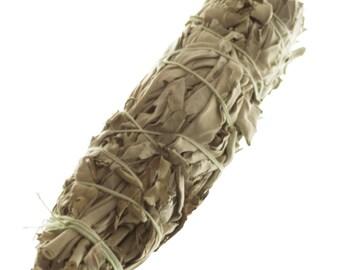 Large Dried White Sage Bundle