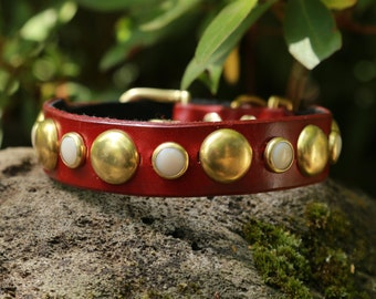 Striking Red Leather Dog Collar