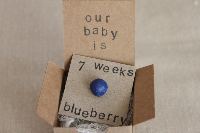 Set Of 6 7 Week Pregnancy Announcements How Big Is My Baby