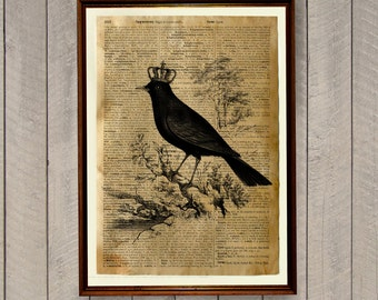 Bird home decor Blackbird print Dictionary page Animal art poster WA361