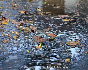 After The Rain, Rain Puddles, Fall Leaves, Water Reflections, Fall