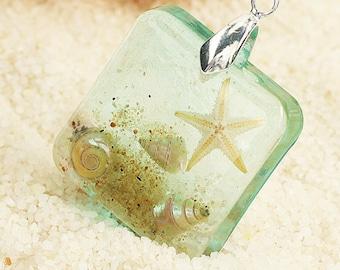on the beach * mini Starfish & mussels k010 *.