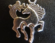 Charms - Icelandic Horse - Tolt - Pace - Canter - Gallop - Trot - Walk - Gaited Horse - Trail Horse - Identification - Lost - Reward