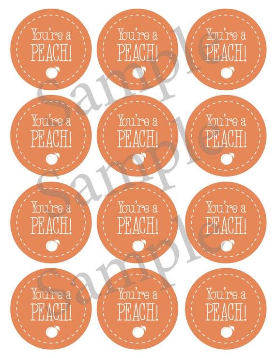 printable peach jam jar label gift tag by luckyyouprintables