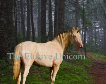 Forest domain.... 8 x10 Unicorn print photograph altered art painting nature forest woods renaissance gothic
