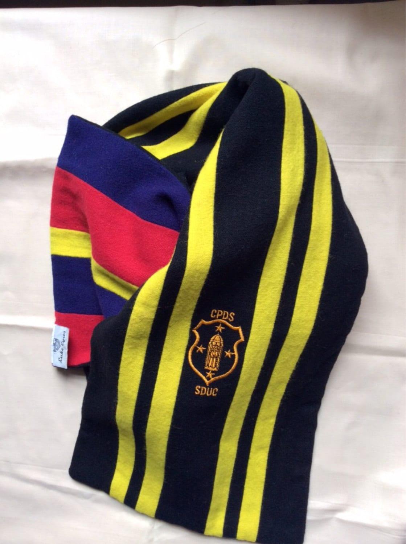 vintage college scarf of wales st davids leter