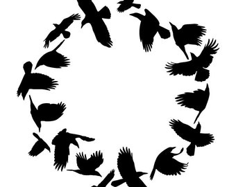 Crows in a circle