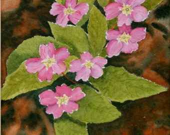 Pink Primroses, Original Watercolour Painting, Garden Flowers, Ready to Frame, Flower Painting, Pink, Green, Includes Mount, 12 x 16 Inches
