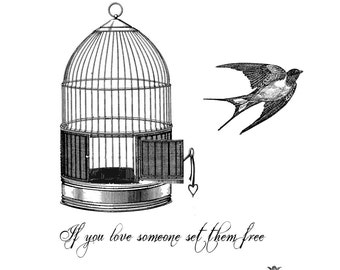 Set them free, Vintage  Birdcage and Bird with quote Wickedly Lovely Skin Art Temporary Tattoo