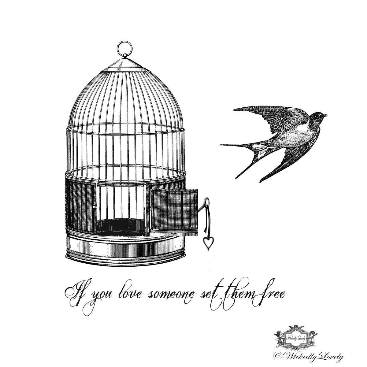caged bird sings poem