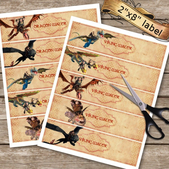 Custom how to train your dragon 2 banner dragons 2 birthday how to train your dragon 2 bottle labels birthday labels dragons 2 water bottle ccuart Choice Image