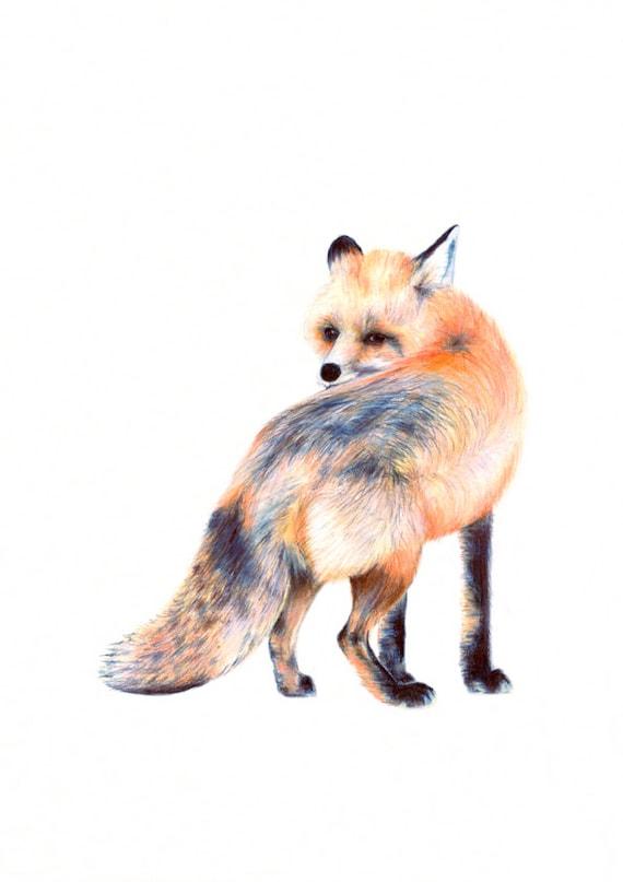 Fox Wall Art woodland poster fox fox wall art print fox nursery wall art