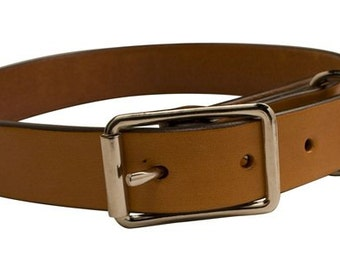 Photo is generic, collars are made to order.