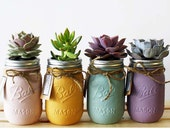 Pastel Collection of 4 Hand Painted Succulent Jars(Pink, Gold, Blue, Purple). Perfect gift, and Home Decoration.