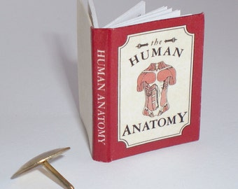 Miniature Book (double sided printed pages and illustrations) - Human Anatomy