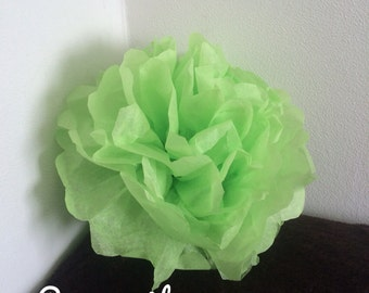 Pack of 2 PomPoms in green anise color tissue paper