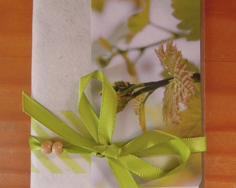 Beige and green book established