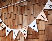 Your Wedding Date.  Personalized Custom Bunting Flag Banner Decoration.  For Weddings, Graduation, Bon Voyage... You choose color scheme...