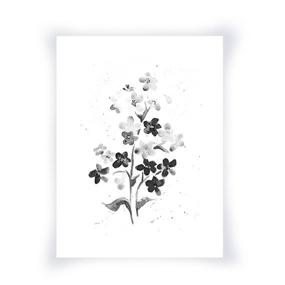 Black Flower Watercolor Art By Tae Lee: Black And White Forget Me Nots From Original Watercolor Black