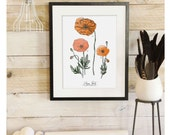 Poppy Study - Botanical Scientific Illustration. Beautifully textured cotton canvas art print. Order as an 8x10 11x14 or 16x20 size.