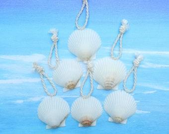 6 Scallop Shells for Wedding Favors Beach Decor - Seashell Holiday Ornaments