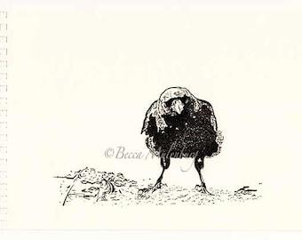 bird drawing crow original ink drawing fish crow nature wildlife