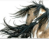 Majestic Horses Pinto Spirit Paint Native Feathers - Fine Art Prints by Bihrle mm89