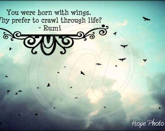 Born With Wings Slice of Wisdom Postcard 6x4 Digital Collage Sheet Download image transfer birds greeting cards UPrint 300jpg