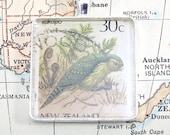 Vintage New Zealand Postage Kakapo Stamp Necklace Pendant Key Ring