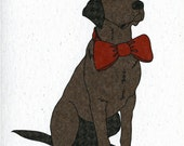 Illustrated Chocolate Labrador Blank Card