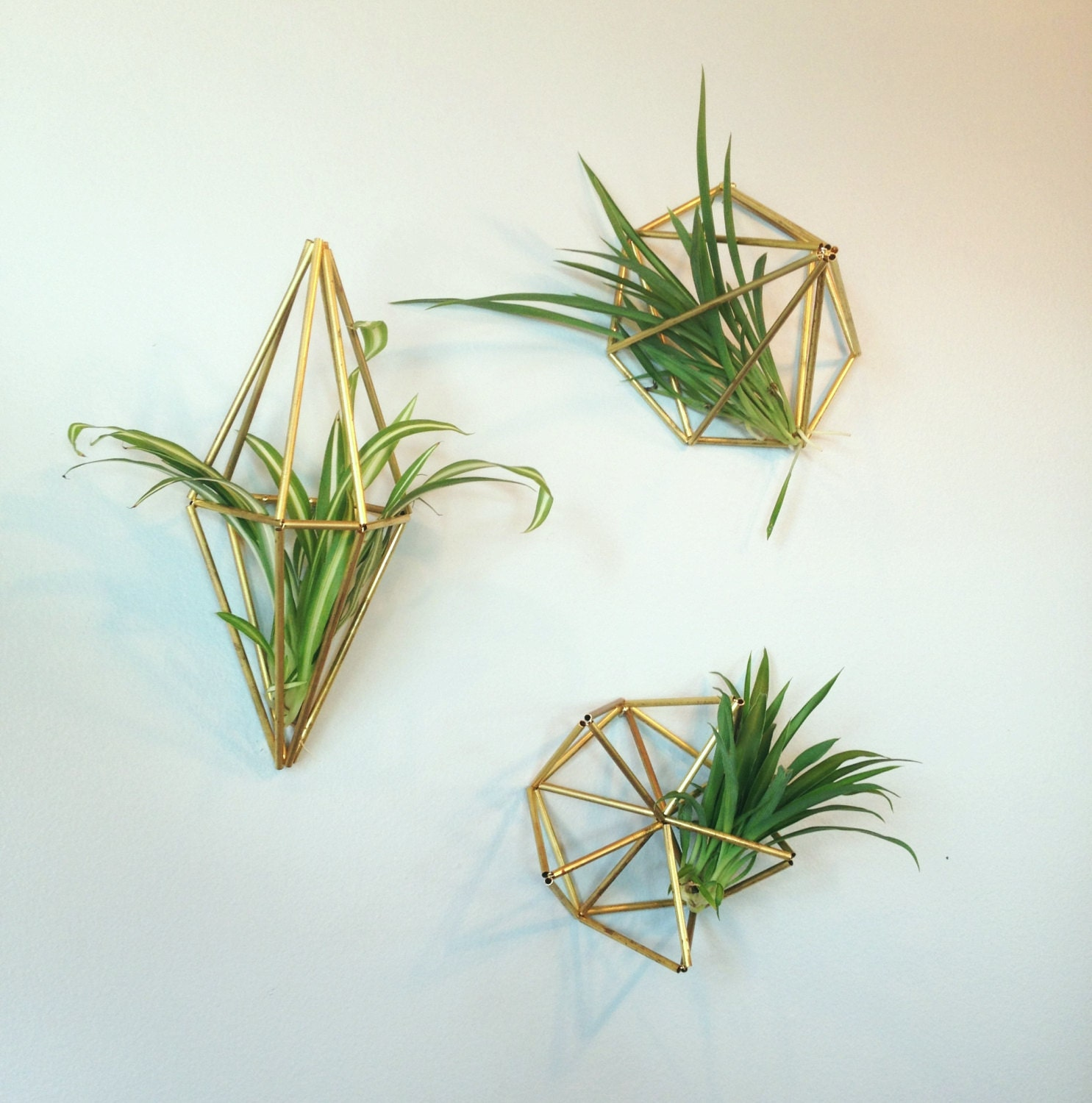 Set of 3 geometric air plant wall hangers brass or silver for Geometric air plant holder