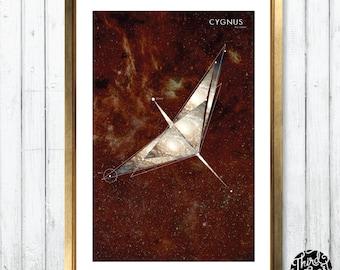 Cygnus Constellation Map Print (11x17)
