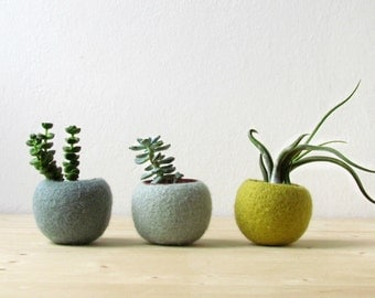 Felt succulent planter / hygge decor / felted pod / Succulent terrarium / Green felt vases / felt bowl / home decor